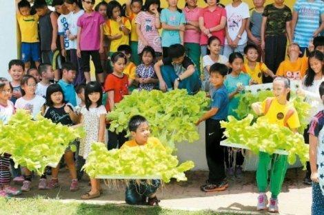 虎山国小两年前每年级学生只有个位数,面临裁并危机;如今以生态小学特色课程,成为台南市唯一增班的学校。 图/虎山国小提供