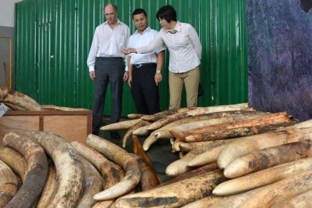 160702 destroy ivory