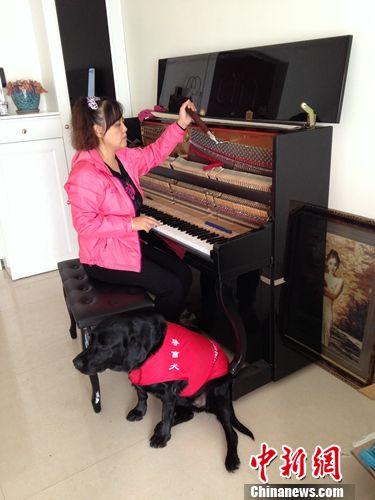 陈燕在调钢琴